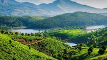 Kerala Hill Stations Tour, Kochi, Multi-day Tours