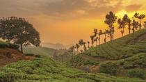 Munnar Misty Hills, Kochi, Multi-day Tours