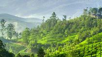 Wildlife With Misty Hills Of Kerala, Kochi, Multi-day Tours
