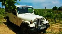 4x4 Wine Tour in the Portuguese Vinho Verde Region including Regional Picnic, Porto, 4WD, ATV & ...