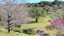 Dine and Disc Golf Package, Austin, Cultural Tours
