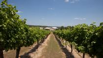 Winery Tour and 3-Course Meal with Wine in Marble Falls, Austin, Wine Tasting & Winery Tours