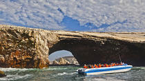Ballestas Islands Group Tour from San Martin Port, パラカス