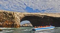 Ballestas Islands Group Tour from San Martin Port, Paracas, Day Trips