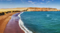 Private Tour to Paracas Reserve, Paracas, Private Sightseeing Tours
