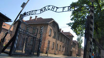 Auschwitz-Birkenau Camp Full-Day Guided Tour from Krakow, Krakow, Private Sightseeing Tours
