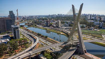 Full-day Private Layover Tour of São Paulo from Santos Port, Santos, City Tours