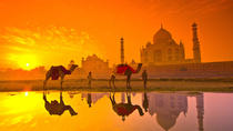 Taj Mahal with local guide full day tour agra, Agra, Full-day Tours