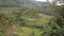 Borobudur and Hidden Sanctuary, Yogyakarta, Cultural Tours