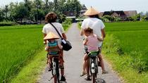 Private Tour: Full-Day Authentic Village Tour on an Antique Style Bicycle from Yogyakarta, ...