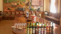 2-Hour Wine Tasting Tour in Samarkand, Samarkand, Wine Tasting & Winery Tours