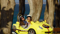 2-Hour Monterey and Pacific Grove Sea Car Tour, Monterey & Carmel