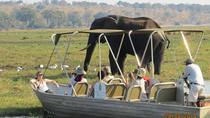 Chobe Day Trip From Victoria Falls, ヴィクトリアの滝