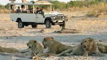 Chobe National Park Camping Safari 2-Days 1 night, Victoria Falls