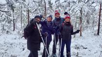 Scenic Snowshoe Hike in Trakai From Vilnius, Vilnius, Hiking & Camping