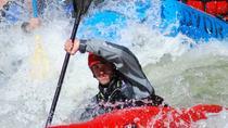 Arkansas River Half-Day Rafting Tour, Buena Vista, null