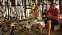 Amazing Yucatan, Mayan Towns, Merida, Day Trips