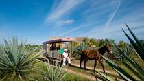 Hacienda Sotuta de Peón, Merida, Day Trips