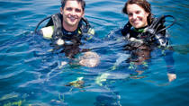 Full-Day Diving for Beginners at Coiba National Park, Santa Catalina