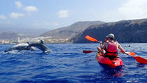 Kayaking With Dolphins in Tenerife, Tenerife, Other Water Sports