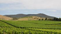 Private Tour to Mount Dandenong and Yarra Valley, Melbourne, Private Sightseeing Tours