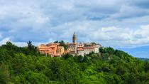 Day-Tour Around Medieval Istria, Pula, Full-day Tours