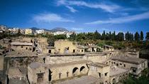 Half-Day Herculaneum Coach Tour, Sorrento, Private Sightseeing Tours