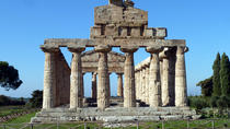 Salerno and Paestum Full-day Coach Tour from Sorrento, Sorrento, null
