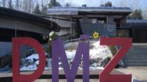 DMZ Tour from Seoul Including Dora Observatory, Seoul, Day Trips