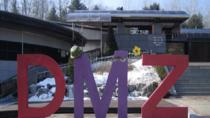 Half-Day DMZ Tour including Dora Observatory, Seoul, Day Trips