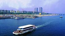 Seoul 4-Hour Afternoon Tour of the Han River Cruise, Aqua Planet 63, and Sky Art, Seoul, null
