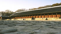 Seoul Morning Heritage Tour inclusief Changdeokgung Palace, Seoel, Halfdaagse tours