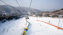 Snow Trip From Seoul, Seoul, Seasonal Events