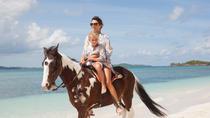 Punta Cana Horseback Tour to Macao Beach, Punta Cana, Day Trips