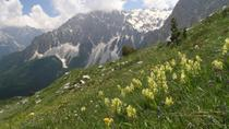 8-Day Albanian Alps Adventure, Tirana, Multi-day Tours