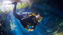 3-Day Diving Tour from Playa Del Carmen, Playa del Carmen, Scuba Diving