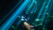 Diving Tour in Dos Ojos and Bat Cenote, Playa del Carmen, Day Trips