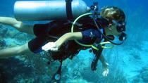 PADI 3-Day Open Water Diver Course in Playa del Carmen, Playa del Carmen, Scuba Diving