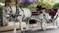 30-Minute Heritage Horse-Drawn Carriage Tour, Victoria, Horse Carriage Rides