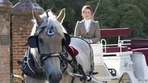 60-Minute Deluxe Horse-Drawn Carriage Tour, Victoria, Horse Carriage Rides