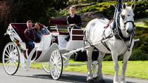 60-Minute Deluxe Horse-Drawn Carriage Tour, Victoria, Half-day Tours