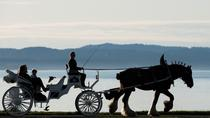 75-Minute Grand Horse-Drawn Carriage Tour, Victoria, Horse Carriage Rides