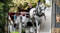 90-Minute Premier Horse-Drawn Carriage Tour, Victoria, Horse Carriage Rides