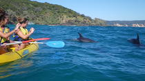Half-Day Kayak with Dolphins and 4WD Beach Drive from Rainbow Beach, Rainbow Beach, Kayaking & ...