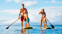 Stand Up Paddle Double Island Lesson