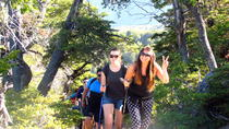2-Day Private Hiking Tour to Altos de Lircay National Reserve, Santiago, Overnight Tours