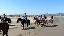 Private Coastal Horse Riding Tour in Concon and Viña del Mar and Valparaiso City Tour from...