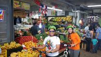 Private Full-Day Bike Tour of Santiago, Santiago, Market Tours