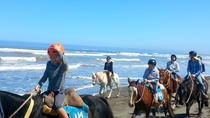 Viña del Mar and Valparaiso Private Tour Including Horseriding, Santiago, Private Sightseeing ...