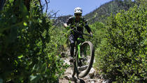 Shuttle to the Top of Mt Wilson for a Single Run , Los Angeles, Bike & Mountain Bike Tours